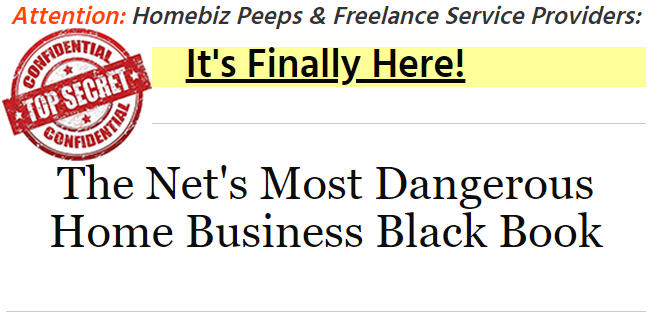The Net's Most Dangerous Home Business Black Book